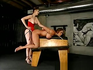 Busty girl punished by a young domina
